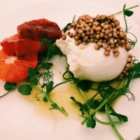 Ottolenghi delights at Nopi